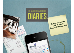 Marketing budget diaries thumbnail